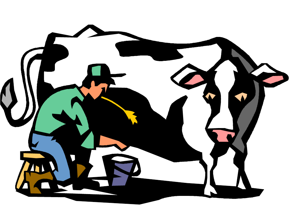 Cow Milk Animation A BIT OF ADVICE ABOUT ...
