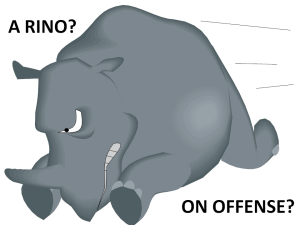 Do RINOs ever go on offense to protect the rights of the People?