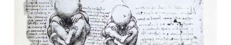 Leonardo's Fetus