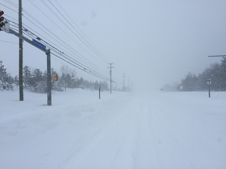 View north along Centreville Road (Virginia State Secondary Route 657) at Franklin Farm Road in the Franklin Farm section of Oak Hill, Fairfax County, Virginia during a period of heavy snow in the Blizzard of 2016 (from here)
